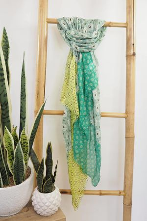 Tessellated Moroccan Scarf Plant