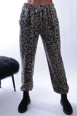 The Cheetah Jogger Mushroom