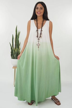 The Ombre Dipped Maxi Plant